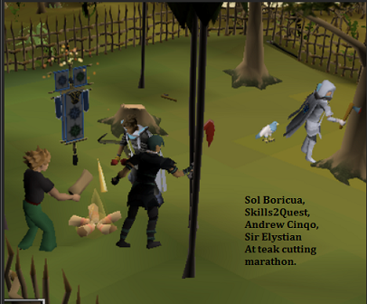 RS Misc - Skilling 005.png